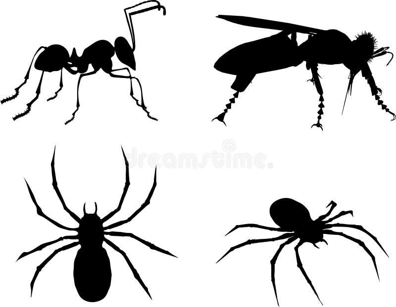 pająk pszczoły mrówki. ilustracji