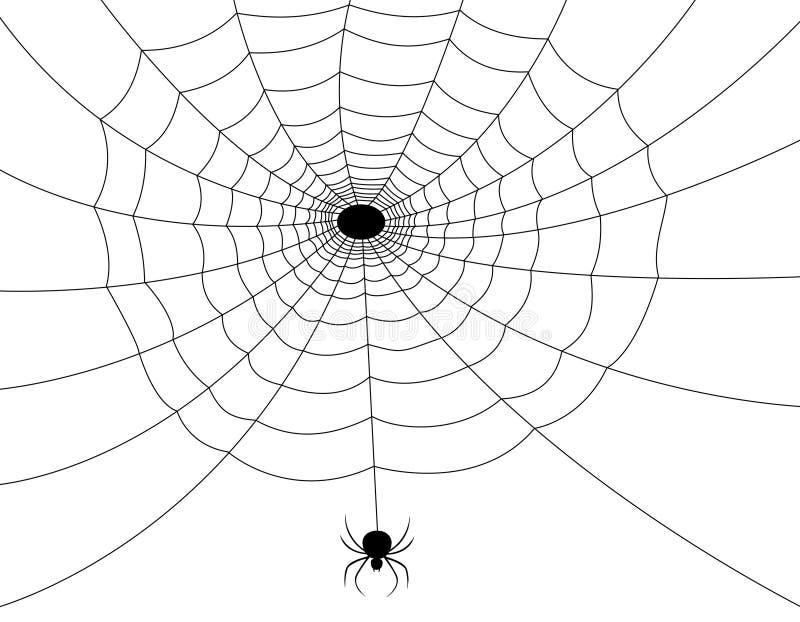 pająk sieć ilustracja wektor