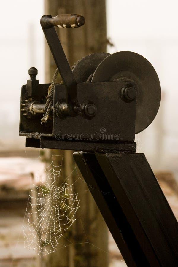 Pająk sieci obwieszenie na drewnianej strukturze zdjęcie royalty free