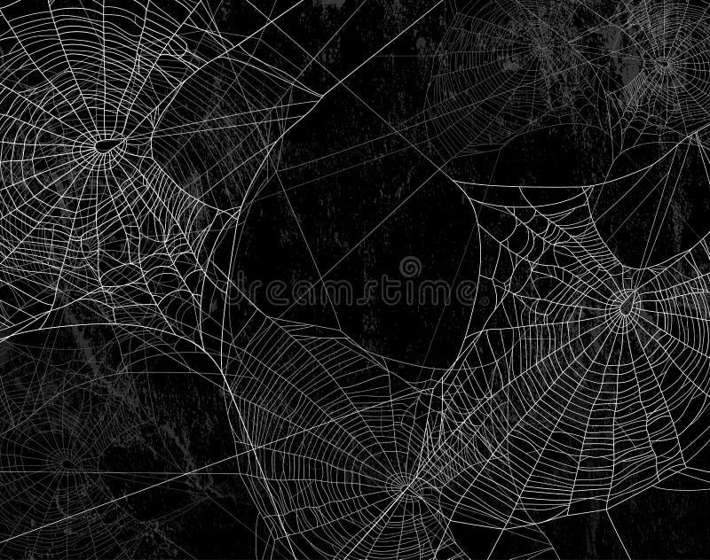 Pająk sieci sylwetka przeciw czerni ścianie royalty ilustracja