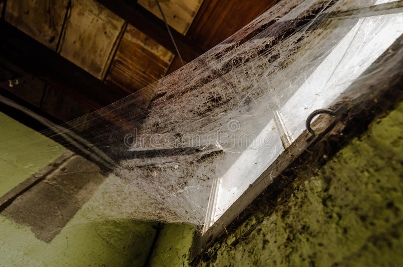 Pajęczyny na okno zdjęcie stock