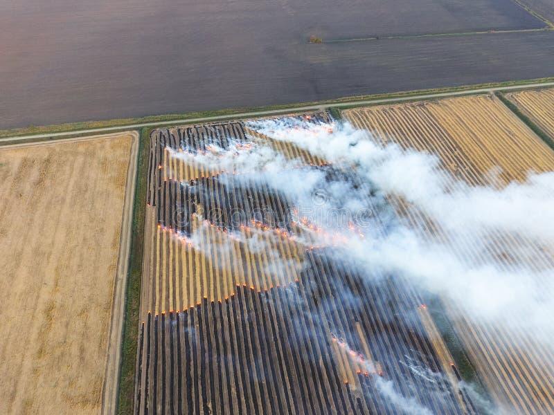 Paja ardiente en los campos después de cosechar la cosecha del trigo imagen de archivo