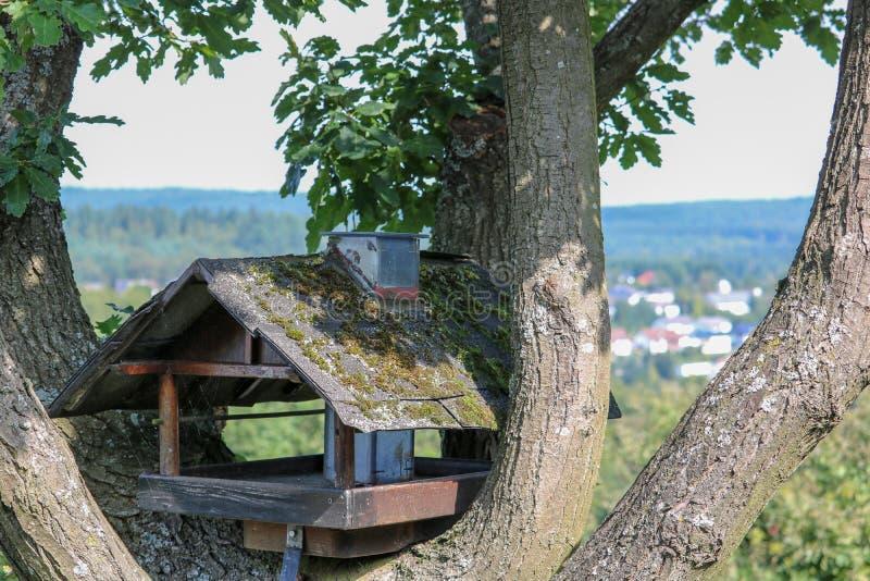 Pajarera de madera en un árbol en Alemania foto de archivo libre de regalías