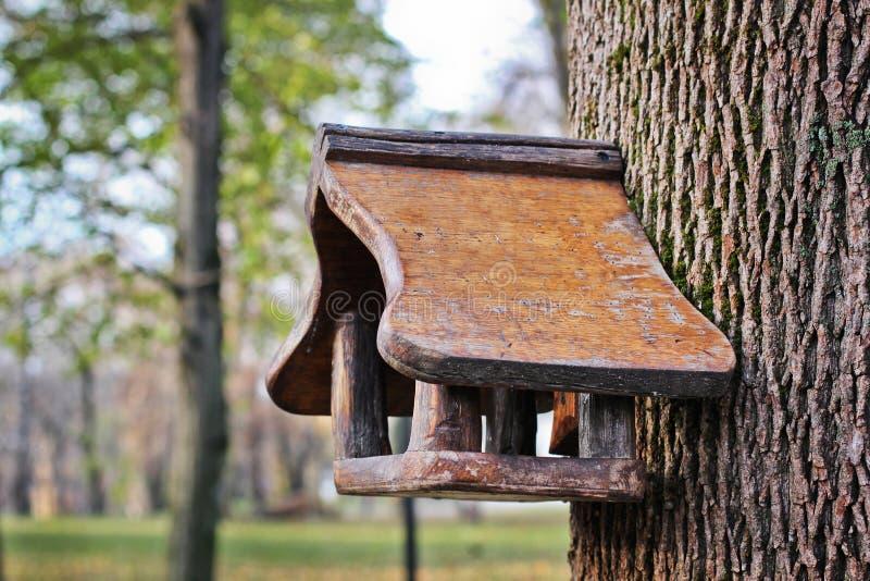 Pajarera de madera en un árbol en el parque imagenes de archivo