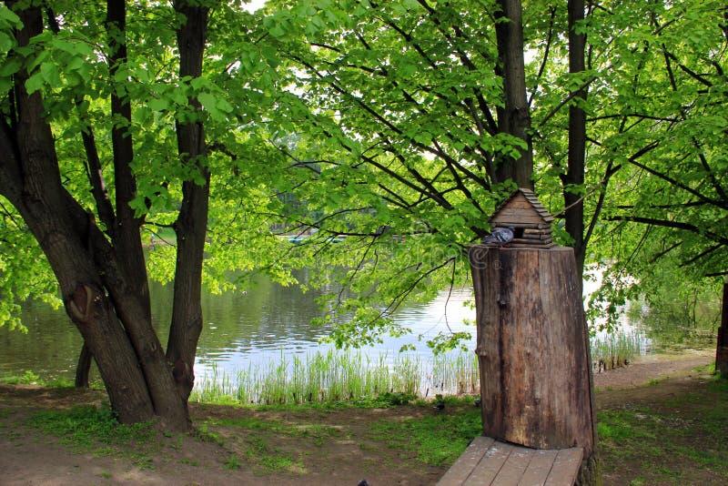 Pajarera en el parque fotografía de archivo libre de regalías