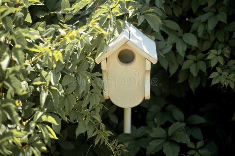 Pajarera en un árbol, sumergido en el verdor del cuidado del pájaro fotos de archivo libres de regalías