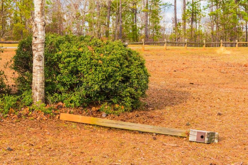 Pajarera que miente en la tierra en paisaje rural foto de archivo libre de regalías