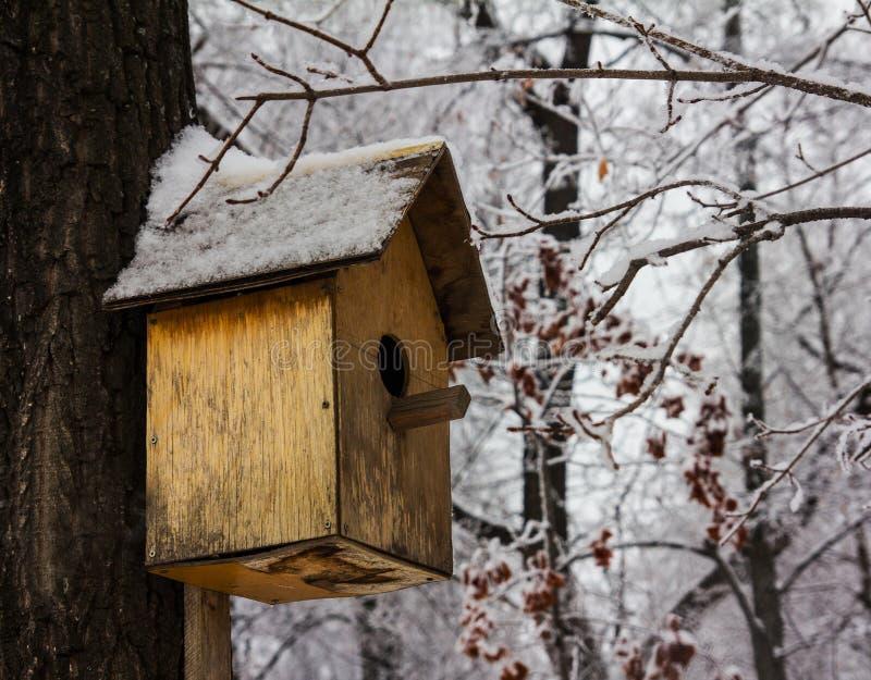 Pajarera vacía en un bosque frío del invierno imagen de archivo