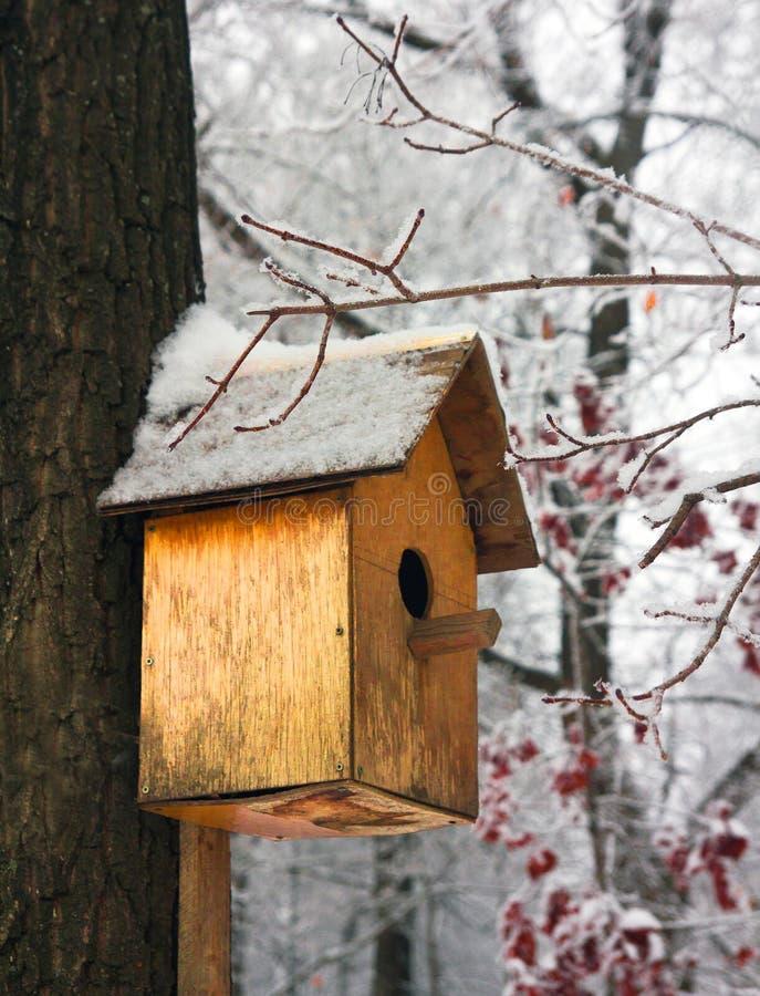 Pajarera vacía en un bosque frío del invierno fotografía de archivo libre de regalías