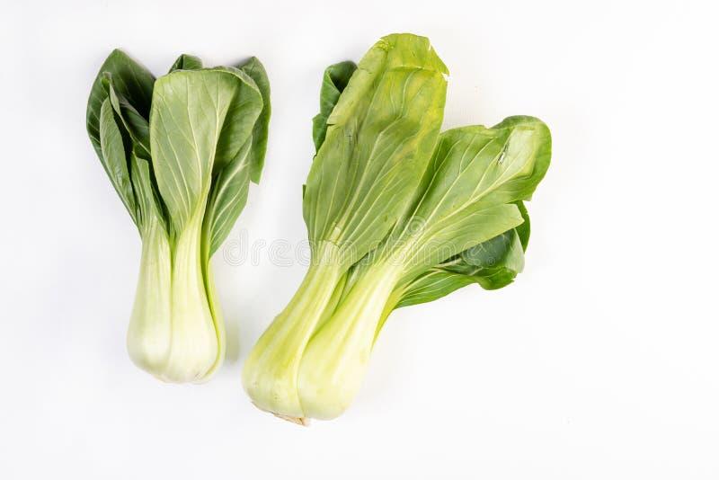 Pak Choi Vegetables Isolated Above White bakgrund royaltyfri bild