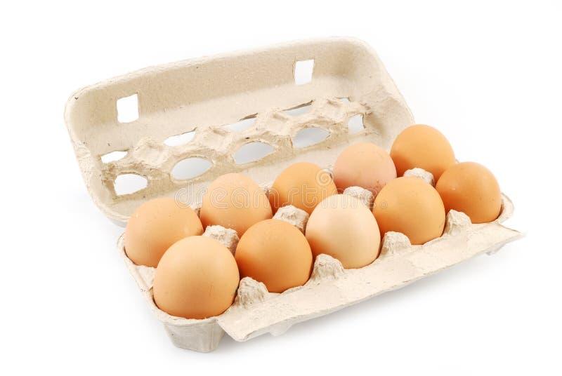 Pak eieren stock fotografie