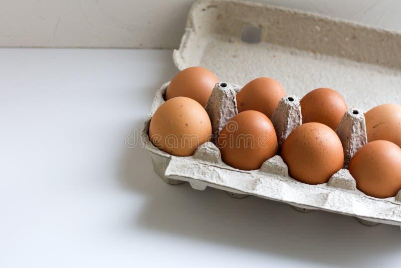 Pak eieren van de landbouwbedrijfkip in kartoncontainer op wit royalty-vrije stock fotografie
