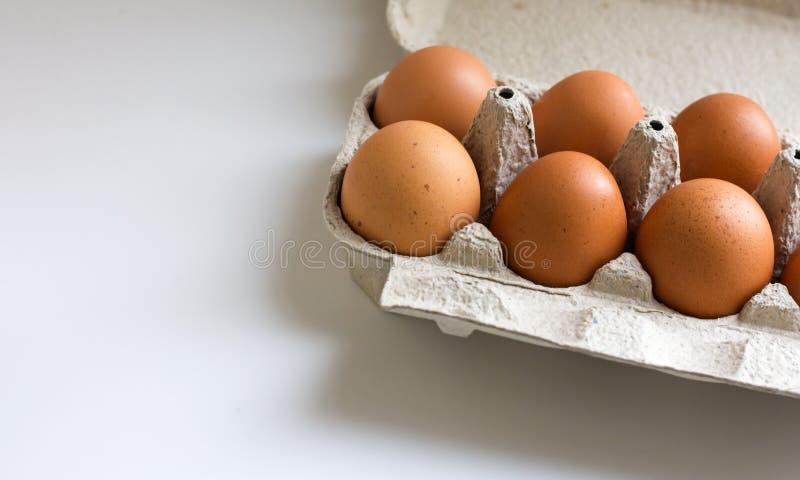 Pak eieren van de landbouwbedrijfkip in kartoncontainer op wit royalty-vrije stock afbeeldingen