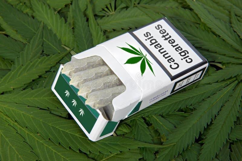 Pak sigaretten royalty-vrije stock foto's