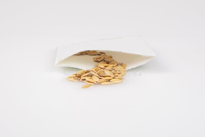 Paket von Kantalupen-Samen stockfoto