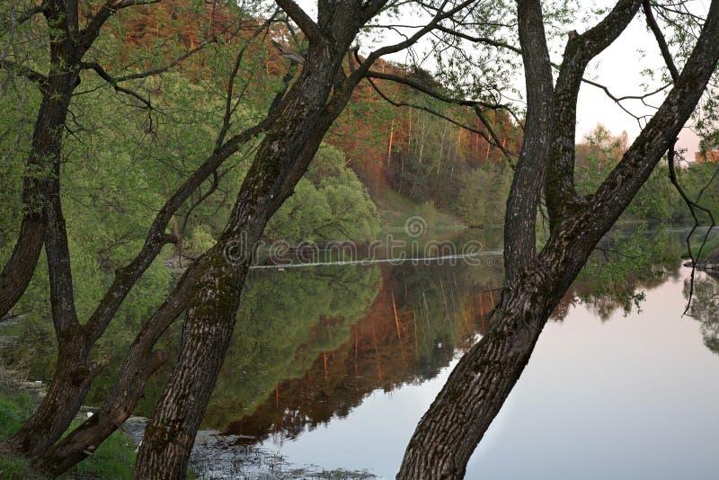 Pakhra河岸在Dubrovitsy 俄国 免版税库存图片