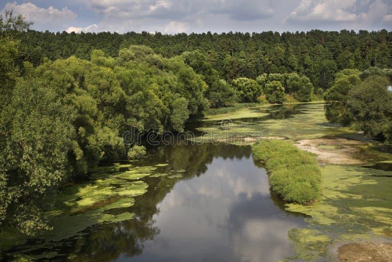 Pakhra河岸在Dubrovitsy 俄国 免版税库存照片