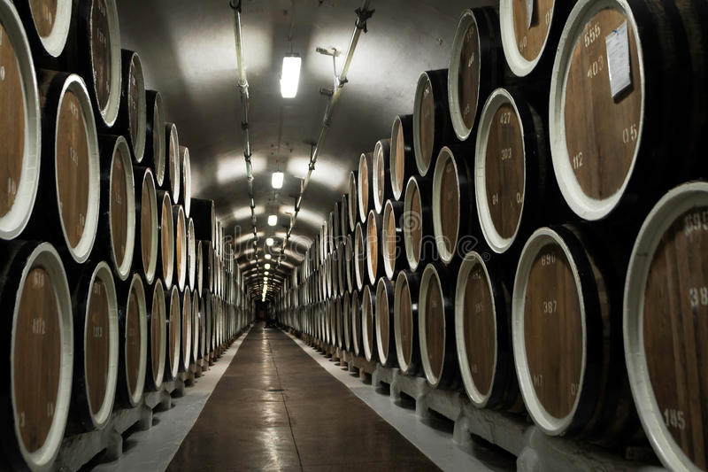 Pakhuis van wijnvatten bij de wijnmakerij stock foto