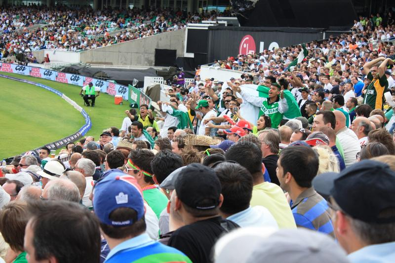 Pakistan fans in the world cup royalty free stock images