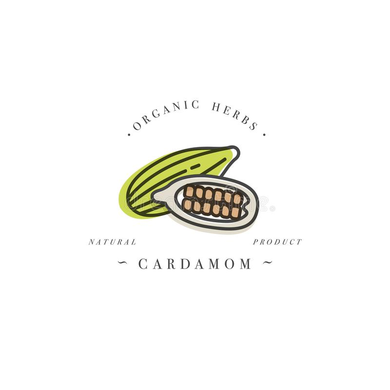 Pakujący projekta szablonu emblemat i loga kardamon - ziele i pikantność - Logo w modnym liniowym stylu royalty ilustracja