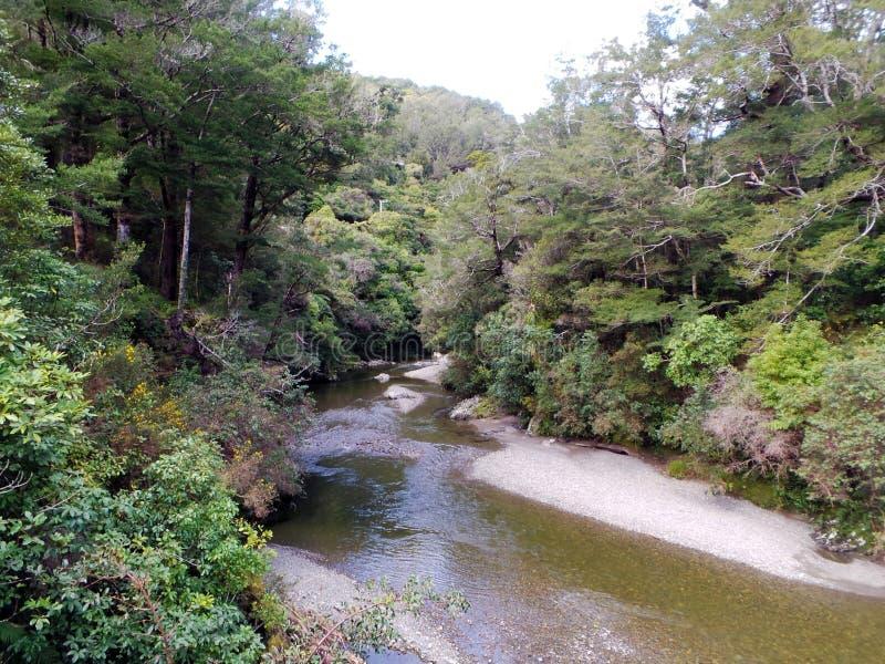Pakuratahi rzeka władyka pierścionków brody Isen, Nowa Zelandia fotografia royalty free
