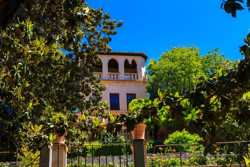 Palácio bonito e ficus enorme em Granada, Espanha imagem de stock royalty free