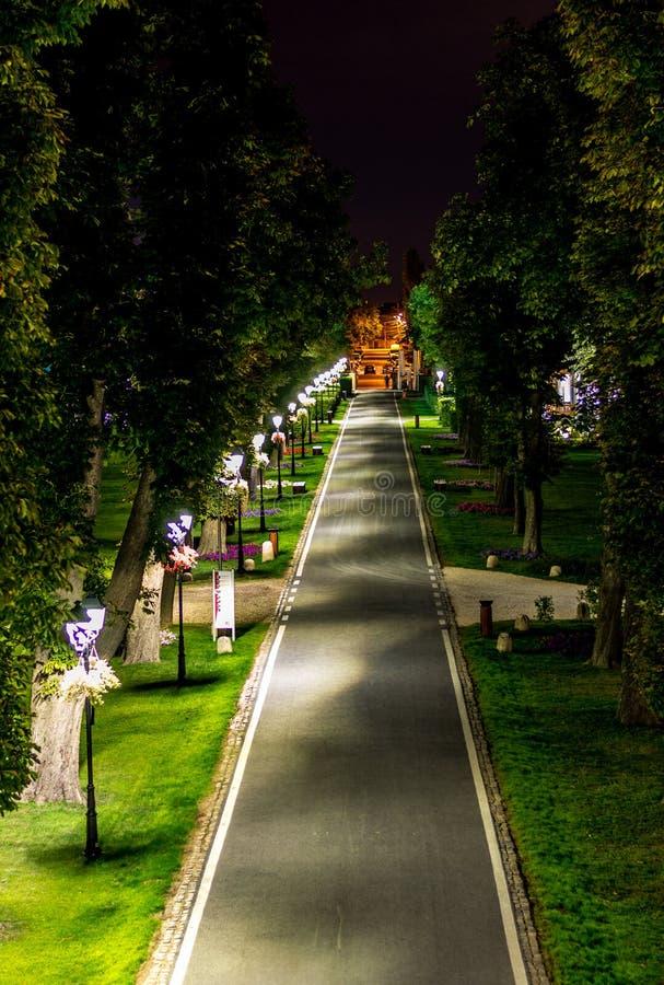 Palácio de Brancoveanu da cidade de Buftea, aleia do parque durante a noite fotos de stock