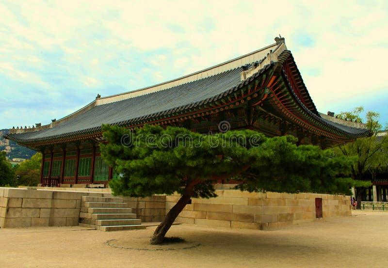 Palácio de Gyeongbok fotos de stock royalty free