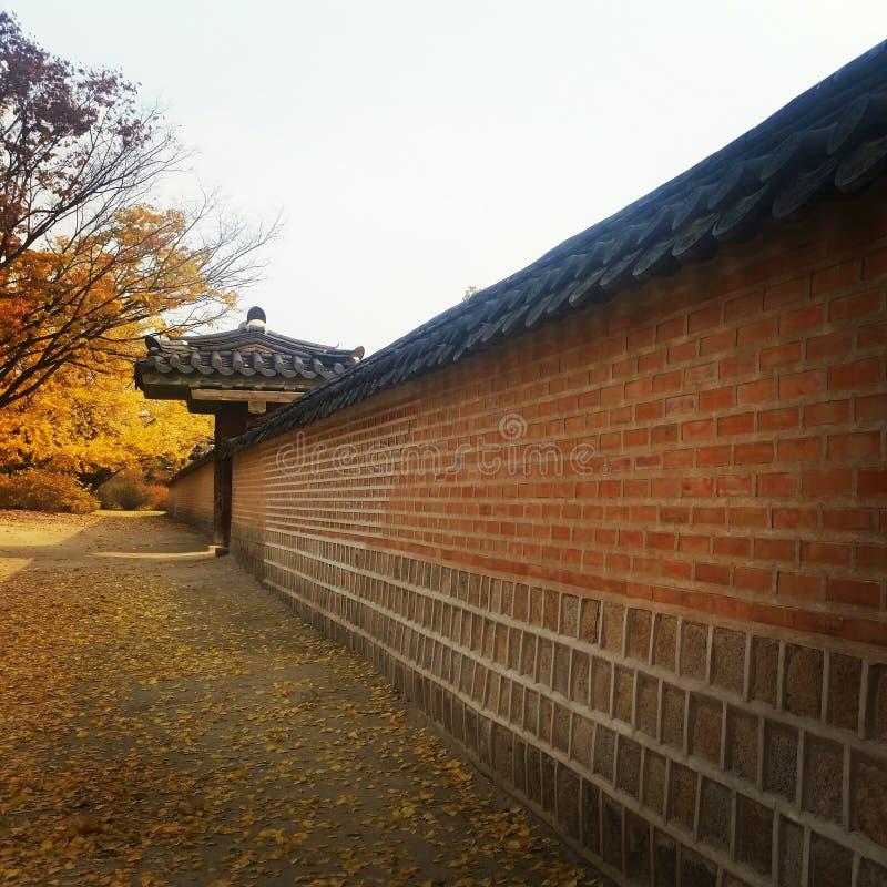 Palácio de Gyeongbokgung fotos de stock royalty free