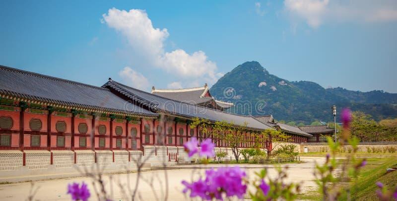 Palácio de Gyeongbokgung em Seoul, Coreia do Sul Na mola Destino popular para o curso em Ásia imagens de stock royalty free