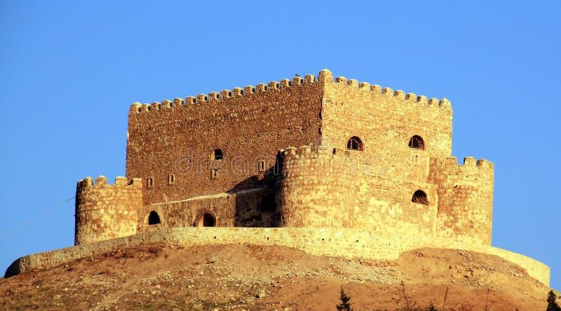 Palácio de Khanzad imagem de stock royalty free
