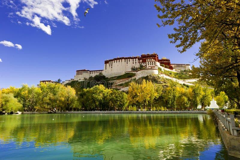 Palácio de Potala, em Tibet de China imagem de stock