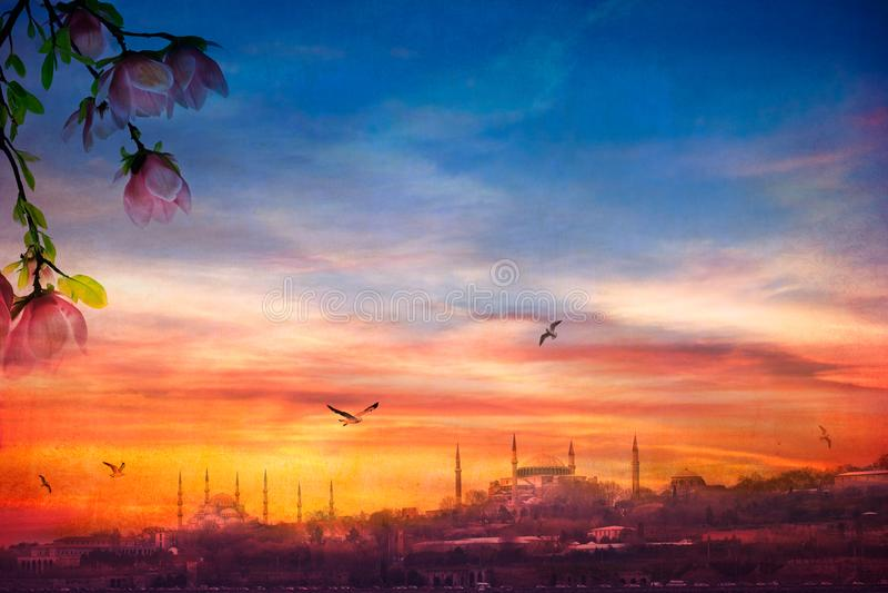 Palácio de Topkapi, Hagia Sophia, mesquita azul e o distrito foto de stock royalty free