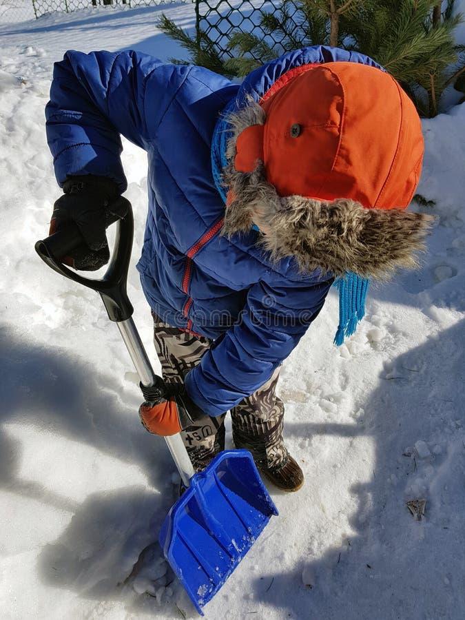 Pala de la nieve en las manos - el ni?o limpia la nieve en invierno o primavera imágenes de archivo libres de regalías