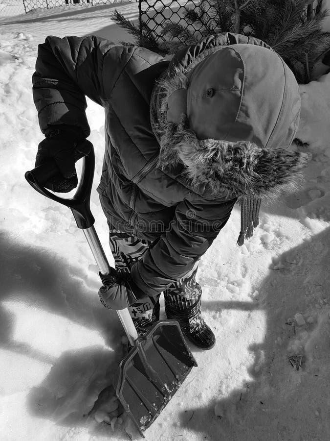 Pala de la nieve en las manos - el ni?o limpia la nieve en invierno o primavera fotos de archivo libres de regalías