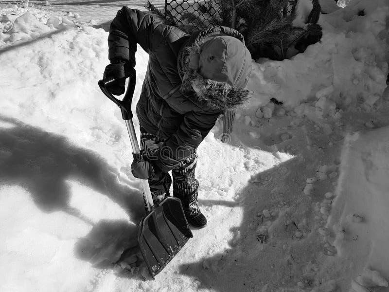 Pala de la nieve en las manos - el ni?o limpia la nieve en invierno o primavera fotografía de archivo libre de regalías