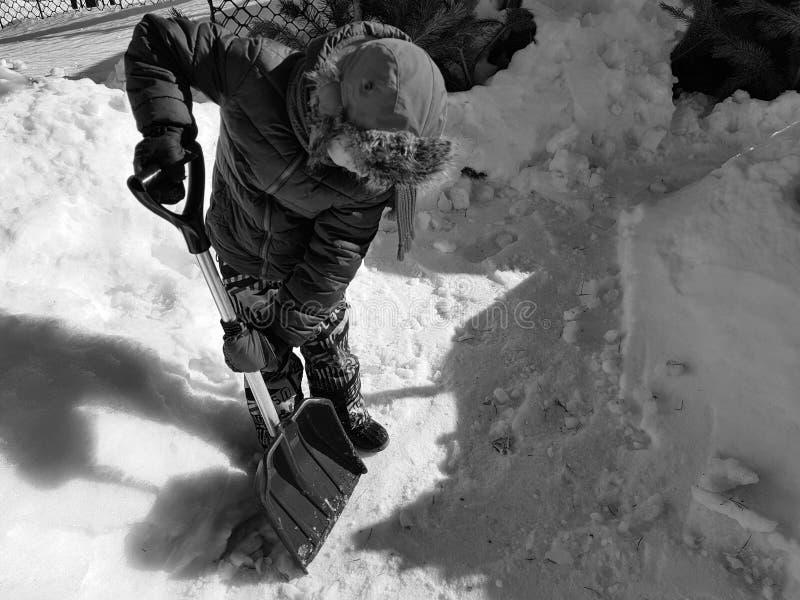 Pala de la nieve en las manos - el ni?o limpia la nieve en invierno o primavera foto de archivo