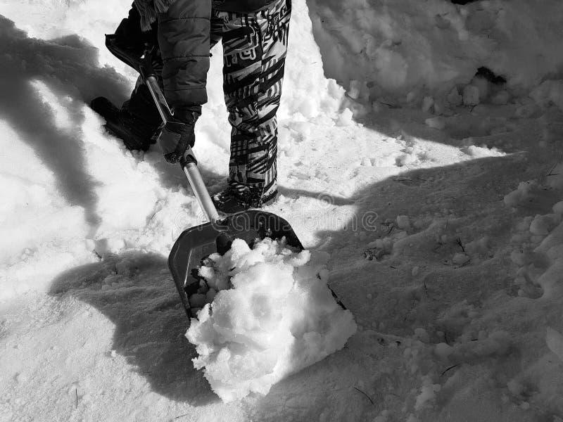 Pala de la nieve en las manos - el ni?o limpia la nieve en invierno o primavera imagen de archivo libre de regalías