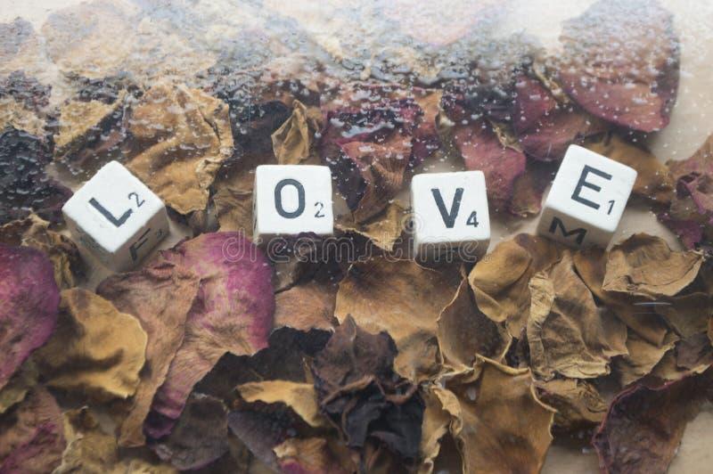 Palabra cúbica del amor del día de tarjetas del día de San Valentín imagen de archivo