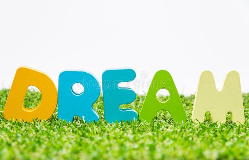 Palabra de madera colorida SUEÑO en hierba verde con el fondo blanco y el foco selectivo foto de archivo libre de regalías