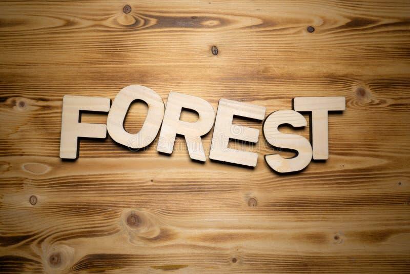 Palabra del BOSQUE hecha con las unidades de creación en el tablero de madera imagen de archivo libre de regalías