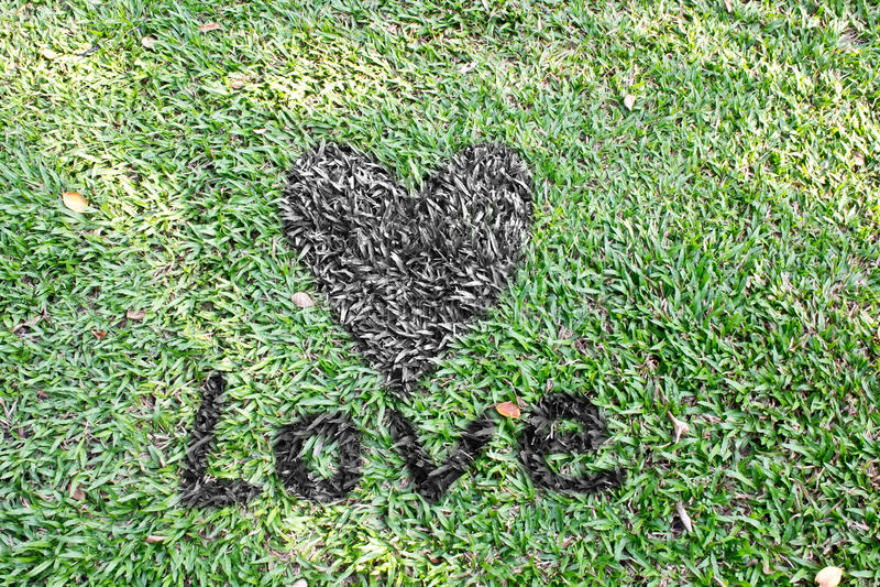 Palabra del corazón y del amor en hierbas imagenes de archivo