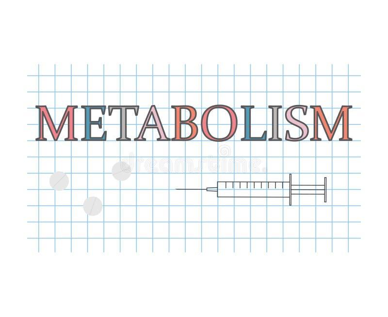 Más en dieta 14 dias cambio metabolismo