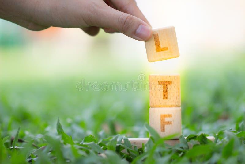 Palabra LTF y RMF del bloque de madera fotografía de archivo