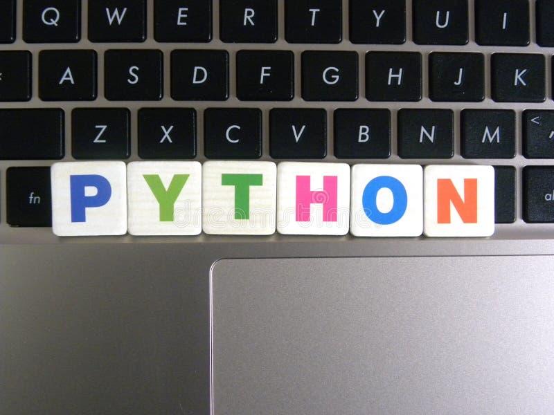 Palabra Python en fondo del teclado fotografía de archivo libre de regalías