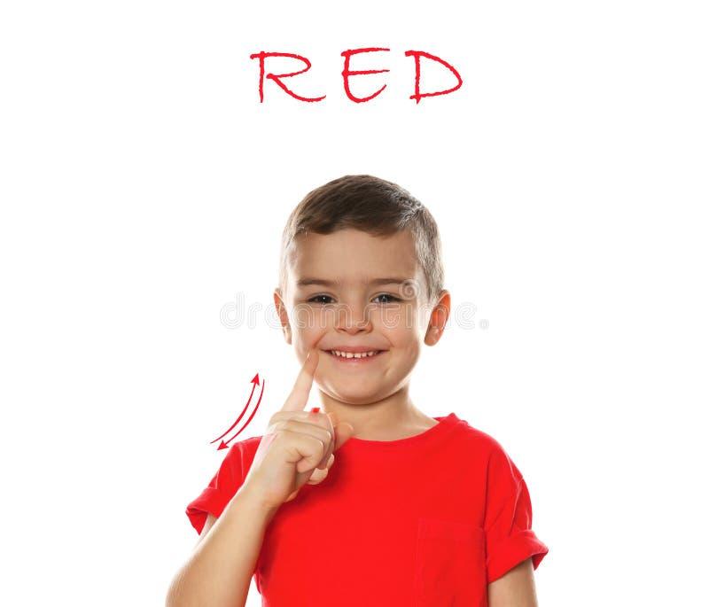 Palabra ROJO de la demostración del niño pequeño en blanco Lenguaje de signos imagen de archivo