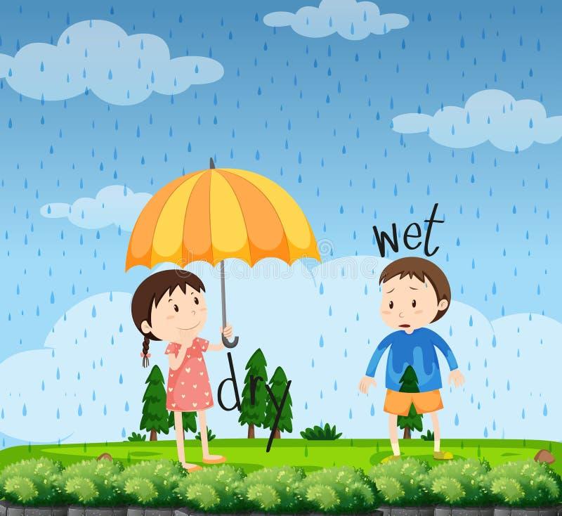 Palabras opuestas para mojado y seco ilustración del vector