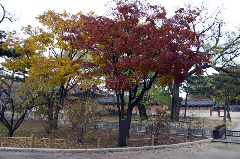 Palace garden fall colors stock image