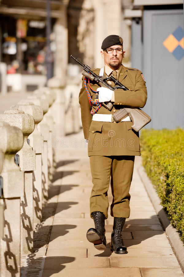 Download Palace guard editorial photography. Image of popular - 23829592