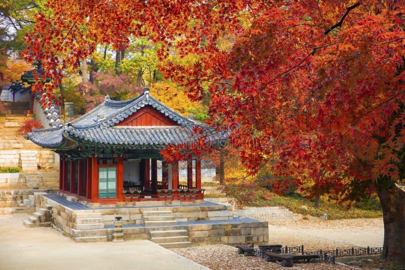 Palacio de Changdeokgung en la Corea del Sur de Seúl del otoño imágenes de archivo libres de regalías